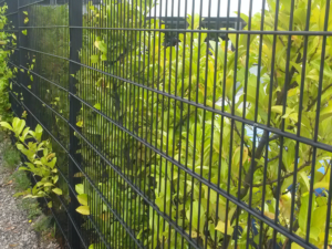 Twin wire security perimeter fencing